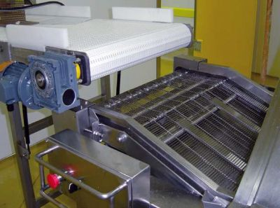 Input conveyor to deep fryer